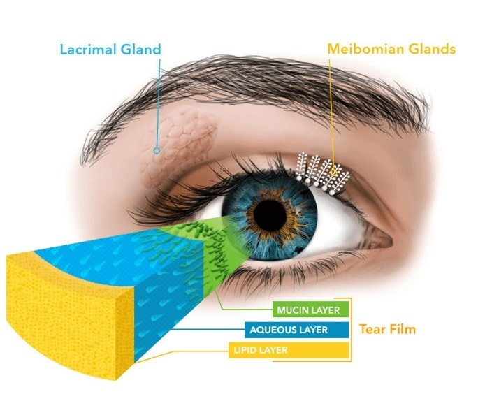 Heated Eye Pad By The Dry Eyes Clinic